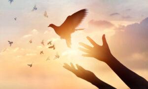 Wspolna-Modlitwa-i-Medytacja
