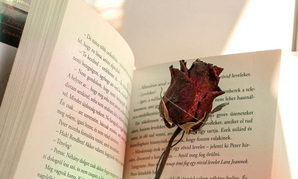 Kocham Ciebie serce moje – Halina Tomczyk