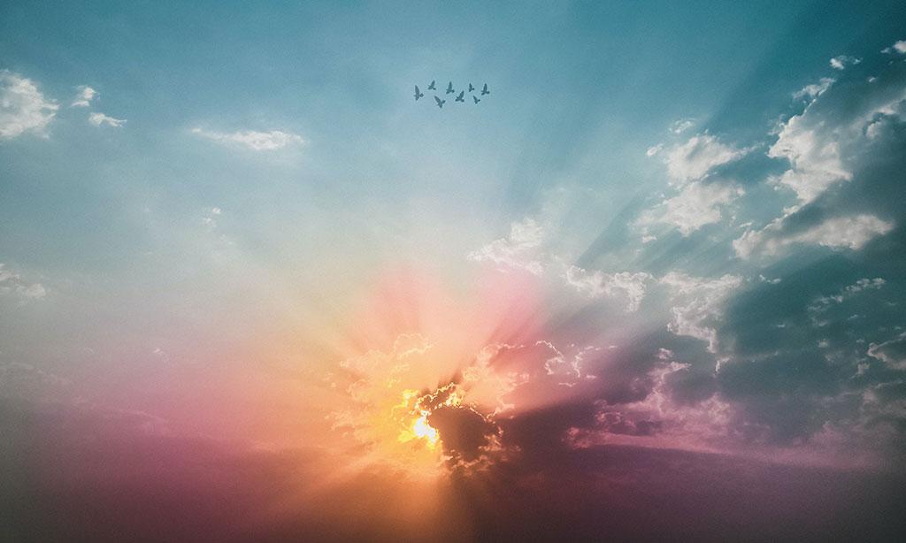 Maryja perłą Nieba – Stwórca